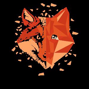 Geometrie Fuchs Motiv