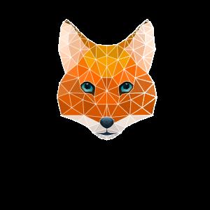 Polygon Geometrie Fuchs