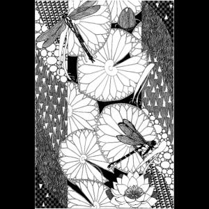 Libellen - Sezession