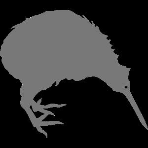 kiwivogel haustier voegel 2