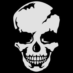 schaedel skelett 9103