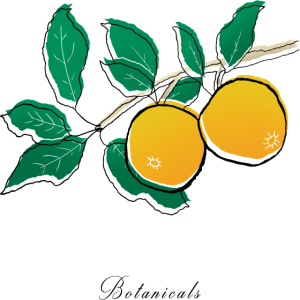 Orange Pflanzenentwurf