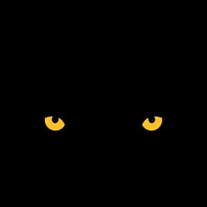 Der Blick des Tigers