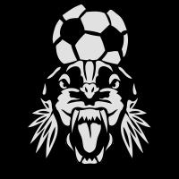 fluegel  fussball sportverein