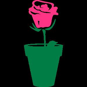 rosa blumentopf 0