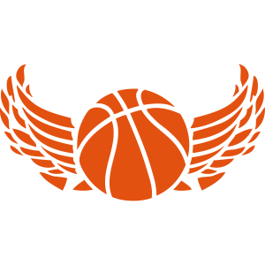 1007 ball basketball fluegel