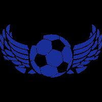 fluegel fussball 1007