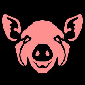 kopf schwein flaeche 8