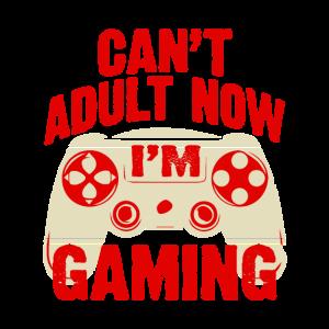 Adult Gaming Zocken