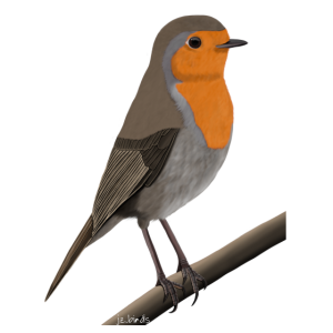 jz.birds Rotkehlchen Vogel Design