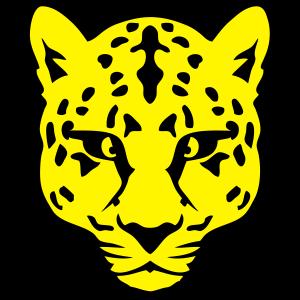 10094 gepard wilde tiere