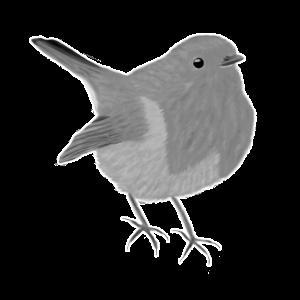 jz.birds Rotkehlchen Vogel Design Illustration