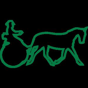 sporttradition pferd hitch wettbewerb 1