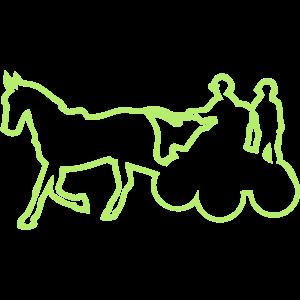 sport pferd hitch wettbewerb 1