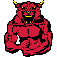 Panther koerper bodybuilding design