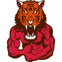tiger koerper bodybuilding design