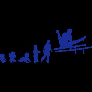 evolution parallel bar gymnastik adult