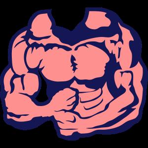 1106 koerper bodybuilding fitness muskel