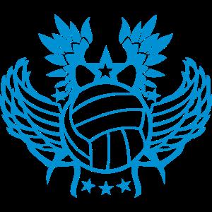 fluegel volleyballs ternesterneballon _in_1