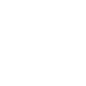 Ich folge dir nicht, aber ich folge Hunden - lustiger Hund