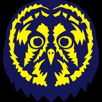 1107 owl kopf