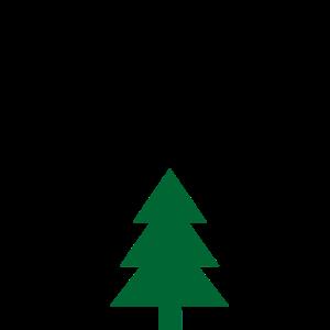 Oh Tannenbaum mit Tanne Weihnachten Weihnachtslied
