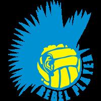 wasserball volleyball ohr punk rebell