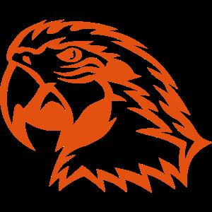 wildvogel papagei 1