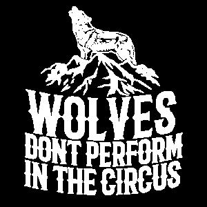 Wölfe müssen nicht in den Zirkus