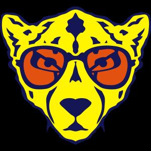 gepard tier sonnenbrillen 1202
