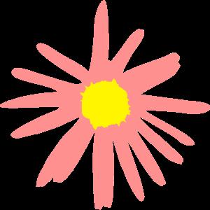 Blume, Gänseblümchen, Margerite