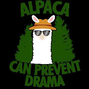 Alpaka kann Drama verhindern
