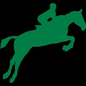 equitation reiter spring pferd 5