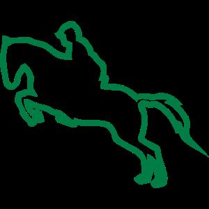 spring pferde hindernis