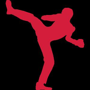 franzoesisch boxen savate 78