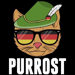 Purrost cat Bavarian