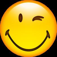 Smiley Glossy Happy Blink