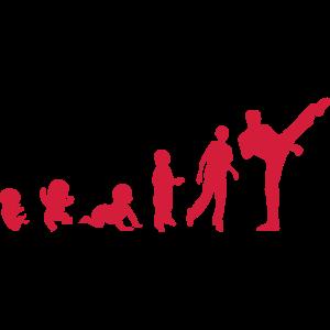 evolution franzoesisch savate boxen