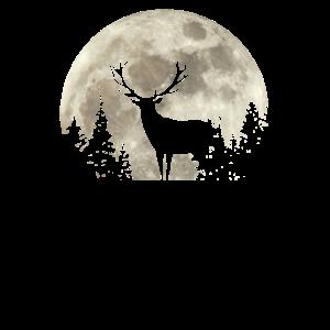 Hirsch Rotwild Rothirsch Jäger Jagd