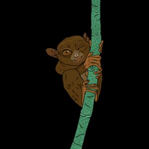 niedlicher Kobold Maki klettert am Bambus Geschenk