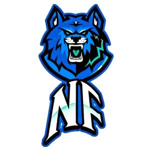 Noah Fortes logo