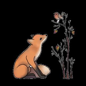 Fuchs und Rotkehlchen
