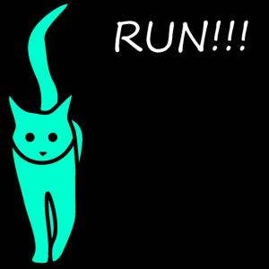 Katze Kaetzchen Mieze Run