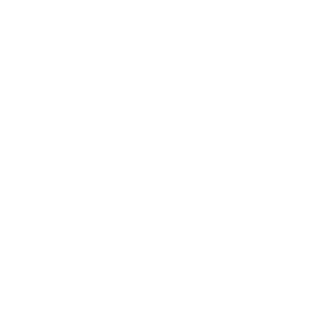 Deutsch Drahthaar Hunde Hund Jagd Drahthaar