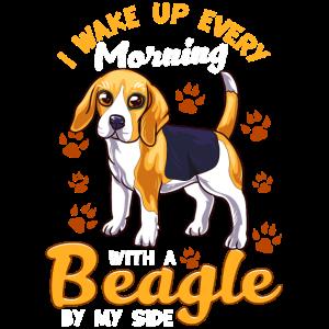 Ich wache jeden Morgen mit einem Beagle an meiner Seite auf