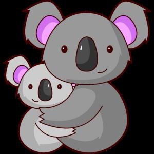 Koalabär Koala kuscheln Eltern Geschenk Australien