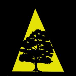 Baum Bäume Natur Wald Naturschutz