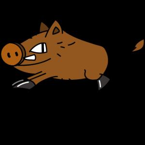 Wildschwein Spirit