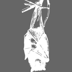 HangingBat weiss