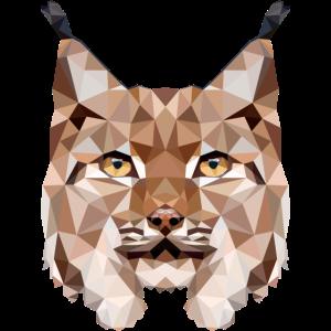 Luchs Europas größte wilde Katze